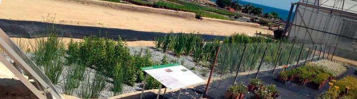 Presentan un nuevo sistema de tratamiento de lixiviados de plantas basado en procesos naturales
