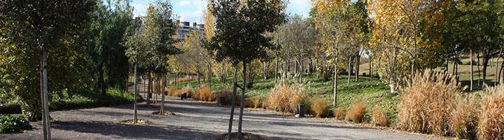 Los parques públicos valencianos suspenden en accesibilidad según el estudio de un estudiante de la ETSIAMN