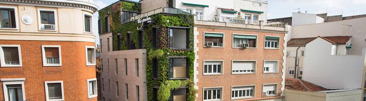 Madrid luce un espectacular jardín vertical en la calle Montera diseñado por el biólogo Ignacio Solano