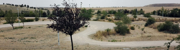 Madrid inicia la primera fase de rehabilitación del parque de la Gavia