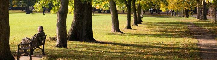 La colaboración público-privada redunda en un servicio de Parques y Jardines más eficaz y de mayor calidad