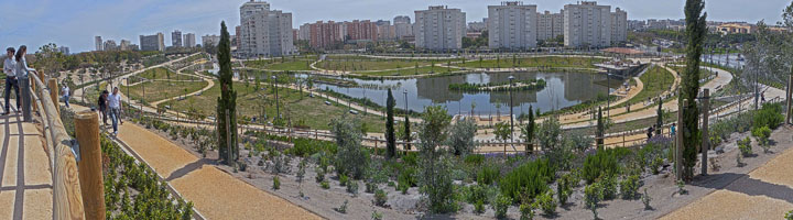Alicante pone a disposición de los vecinos el parque inundable La Marjal, situado en la Playa de San Juan