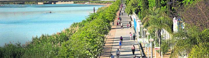 Sevilla aprueba el proyecto para la reurbanización completa del Paseo de Torneo