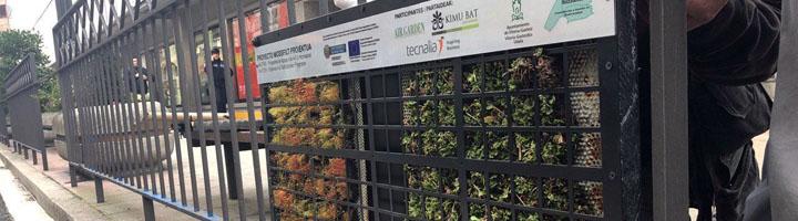 Vitoria-Gasteiz colabora en el desarrollo de un filtro natural adaptable al mobiliario urbano que mejorará la calidad del aire