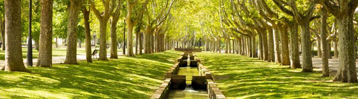 El presente y futuro de las infraestructuras verdes se debate en Zaragoza