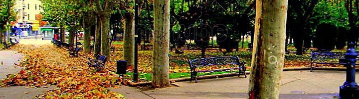 Salamanca mejorará este año otros cinco parques y plazas de la ciudad