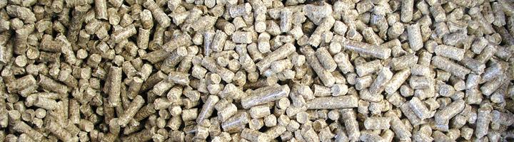 Mucho más protagonismo para la biomasa térmica en el actual contexto de eficiencia energética y rehabilitación
