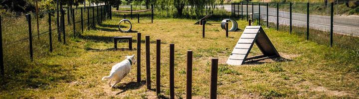 Sueca inaugura su primer circuito agility canino construido con materiales reciclados
