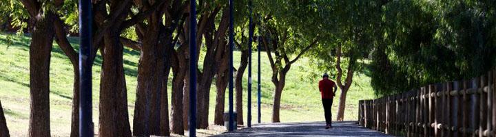 Sevilla licita por 136.000 euros la obra de ampliación de los Viveros de Miraflores