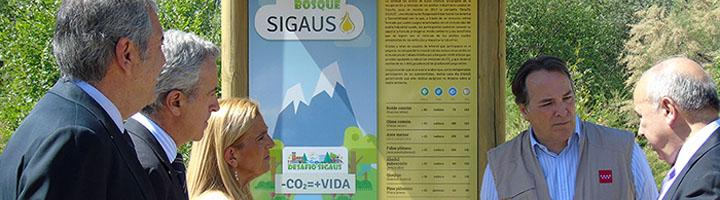 SIGAUS inaugura la plantación de su Sexto Bosque en Collado Villalba