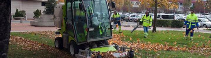 Palma aprueba los pliegos para la licitación del contrato de servicios de mantenimiento de zonas verdes