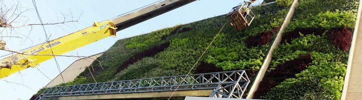 Ignacio Solana finaliza el jardín vertical más grande de Bolivia