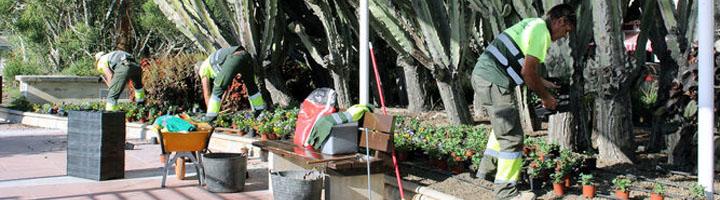 Almería licita el nuevo contrato para la conservación y mantenimiento de zonas verdes y arbolado urbano en la ciudad