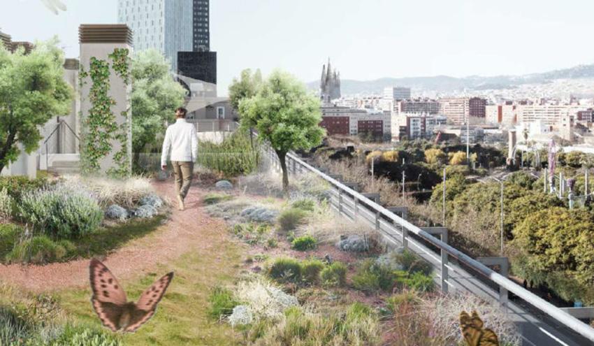 Adjudicados los diez proyectos ganadores del segundo concurso de cubiertas verdes del Ayuntamiento de Barcelona