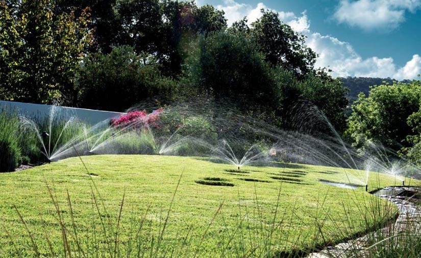 Ahorro de agua en el riego de zonas verdes