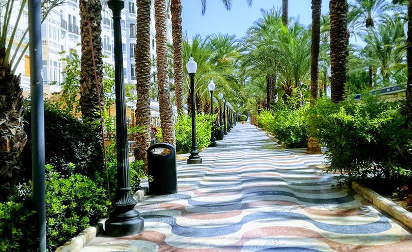 Alicante licita el nuevo contrato de mantenimiento de las zonas verdes de la ciudad