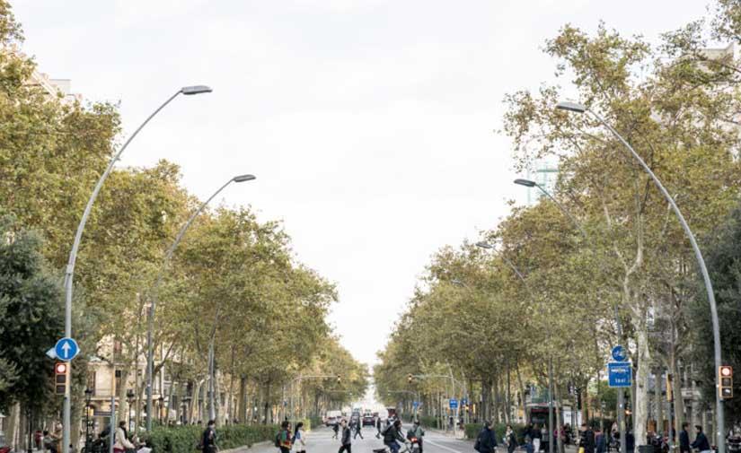 Barcelona actúa para ser más saludable y resiliente ante la emergencia climática