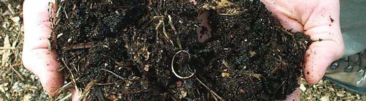 Promedio inicia el estudio sobre el sistemas de recogida de restos orgánicos dentro del proyecto ECO2CIR