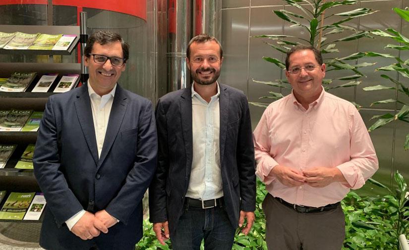 Castilla-La Mancha impulsa la eficiencia energética en el alumbrado de los municipios de la región