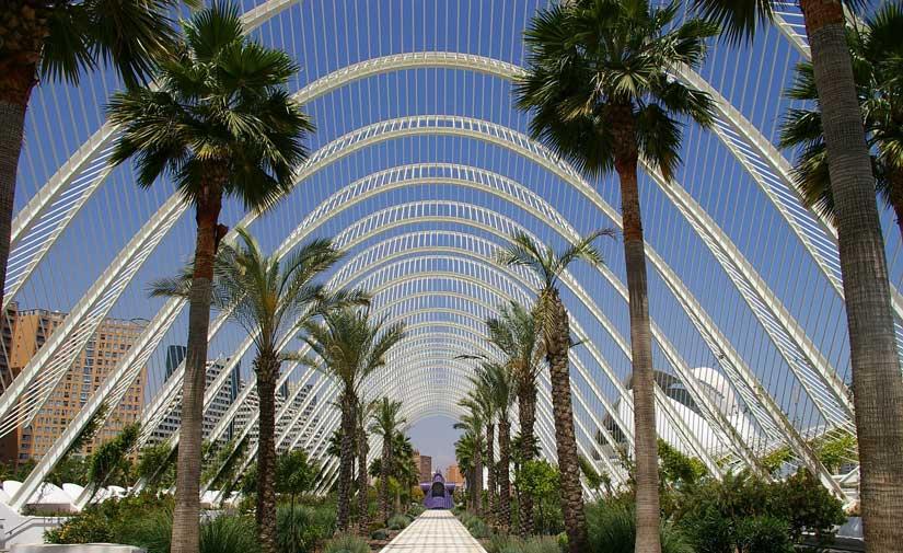 El alcalde de Valencia anuncia el primer plan verde y de la biodiversidad de la ciudad para hacer frente al cambio climático
