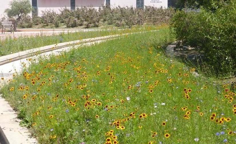 El Ayuntamiento de Huesca gana el Premio de Buenas Prácticas Locales por la Biodiversidad de la FEMP