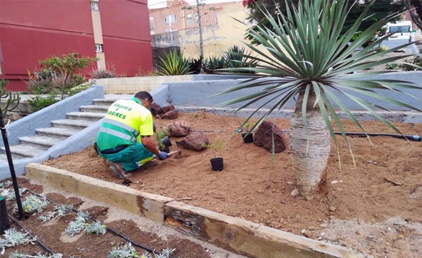 El Ayuntamiento de Las Palmas de Gran Canaria dinamiza las zonas verdes de la Vega de San José con nuevo equipamiento y vegetación