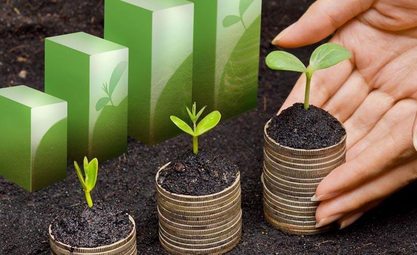 El Gobierno Vasco aprueba ayudas por 3,5 millones para acciones locales de desarrollo sostenible