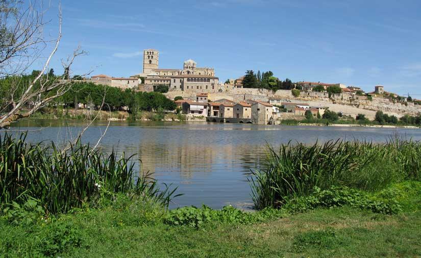 El mayor contrato de recogida de residuos y limpieza viaria de Zamora sale a licitación