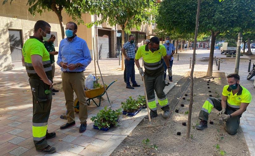 El Plan Hiedra viste de verde Murcia