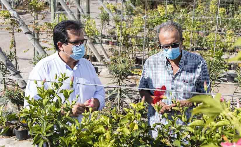 El 'Plan Savia' embellecerá Almería con 60.000 plantas para los 103 municipios