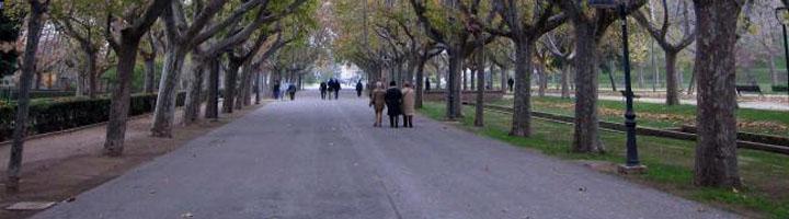 Un concurso de ideas mejorará el nuevo pavimento del paseo de los Plátanos del Parque Grande en Zaragoza
