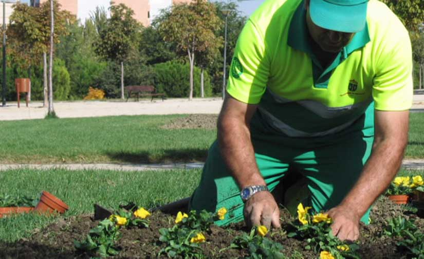 FCC Medio Ambiente adjudicataria del nuevo contrato de recogida de residuos y limpieza urbana en Manilva (Málaga)