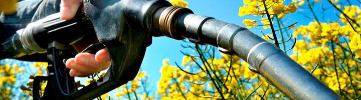 El Gobierno fomenta el uso de biocombustibles para tratar de llegar al 20% de renovables en 2020