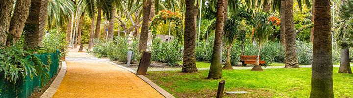 Santa Cruz de Tenerife celebra este viernes la II Jornada de Parques y Jardines