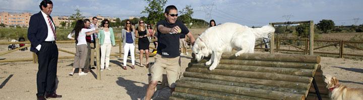 Parla modificará la Ordenanza de Protección Animal para ampliar las zonas y el horario de esparcimiento canino
