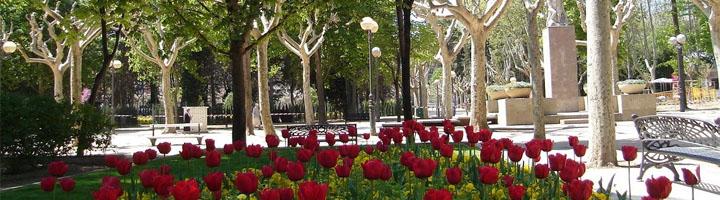 Huesca invertirá 1,4 millones de euros en el proyecto de mejora de viales e infraestructuras del parque Miguel Servet