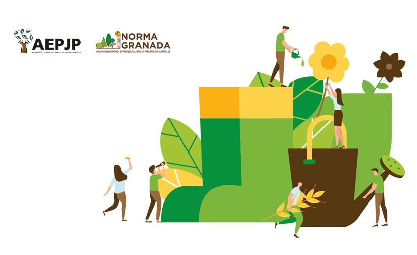 La versión 2020 de la herramienta de valoración ornamental Norma Granada ya está disponible