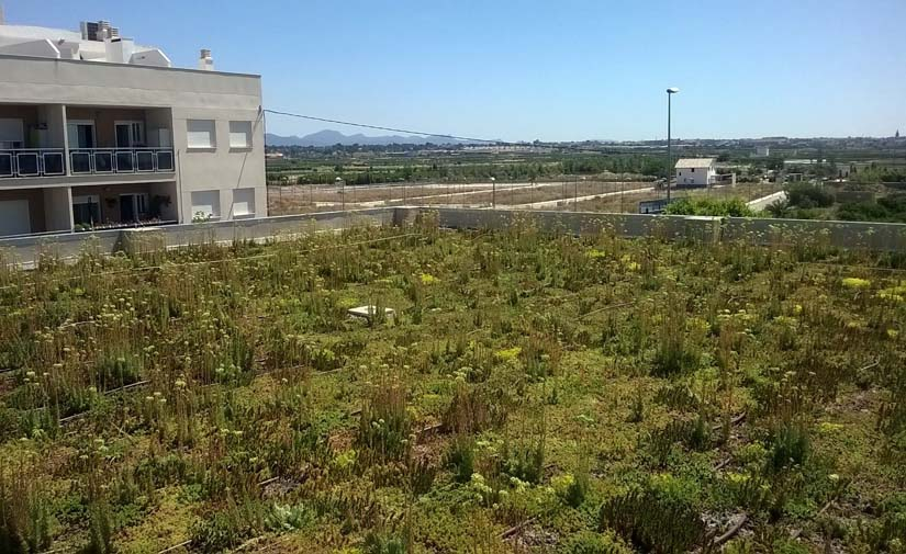 Los espacios verdes en las ciudades permiten gestionar el agua acumulada y evitar inundaciones en épocas de lluvia