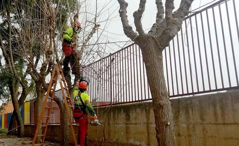 Murcia continúa su apuesta por mejorar el medioambiente con el uso de maquinaria eléctrica para el cuidado de los jardines