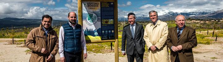 El séptimo Bosque SIGAUS crecerá en la localidad madrileña de Colmenar Viejo