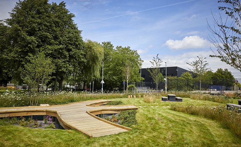 Parques de esponjas y jardines verticales: cómo las ciudades utilizan la naturaleza para superar el clima extremo