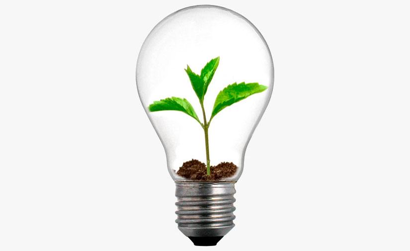 Reconocimiento para el Programa de Compra Pública Verde del País Vasco