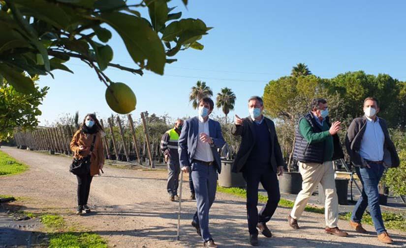 Sevilla suscribe el Acuerdo de Ciudad Verde de la Unión Europea