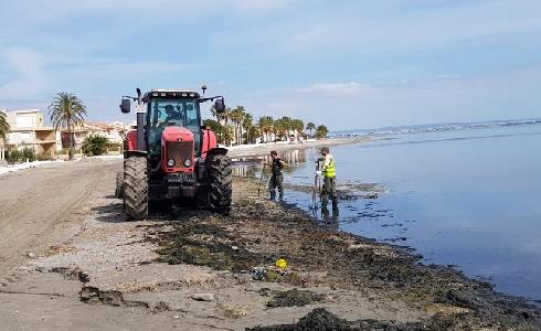 Cerca de una veintena de operarios retoman el mantenimiento del litoral en Cartagena