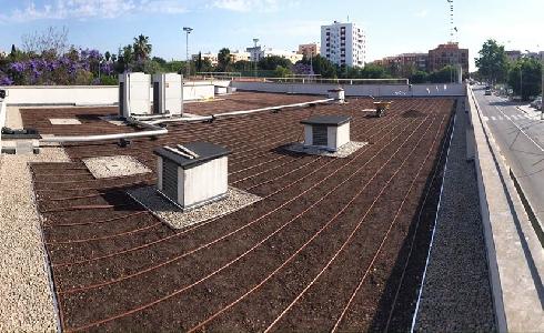 El Ayuntamiento de València instala una cubierta ajardinada en el centro de mayores de Benicalap