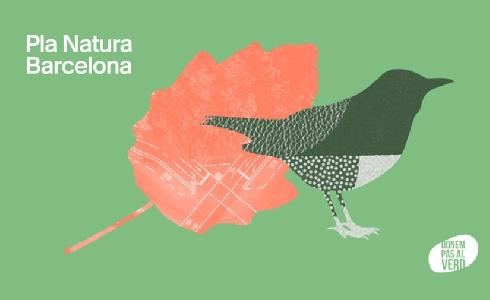 El nuevo plan Natura de Barcelona impulsará los espacios verdes y la biodiversidad