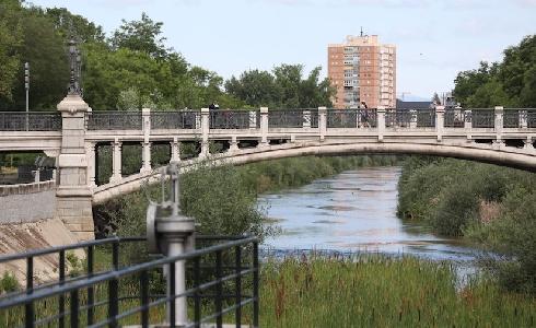 El proyecto de renaturalización del Manzanares, reconocido por su papel en la mejora de la biodiversidad urbana
