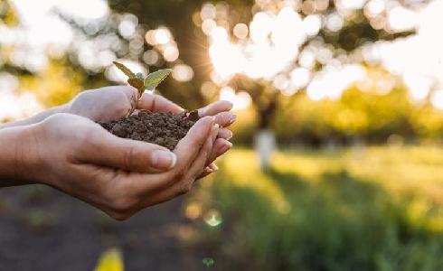 La AEPJP propondrá al Gobierno la creación de un espacio de trabajo para documentar el uso sostenible de los productos fitosanitarios