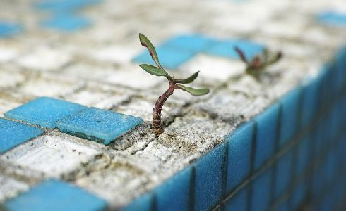 La ciudad no termina en la superficie: el papel del suelo en la sostenibilidad urbana