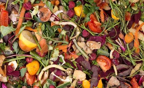 La Diputación de Álava crea Konposta Araba para mejorar la gestión de biorresiduos
